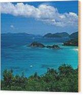 Caribbean Blue Wood Print by Kathy Yates