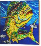 Caribbean Bull Wood Print