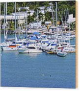 Caribbean Sails Wood Print