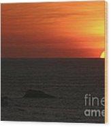Caribbean Sunset Wood Print by Torsten Dietrich