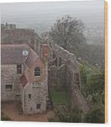 Carisbrook Castle Wood Print