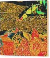 Carlos Visits Don Juan In The Desert Wood Print