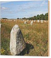 Carnac Standing Stones Wood Print