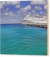 Carnival Elation Docked At Cozumel Wood Print