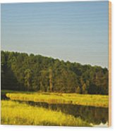 Carolina Morning Wood Print