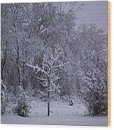 Carolina Snowfall Wood Print