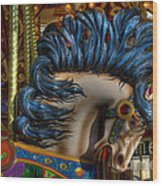 Carousel Beauty Star Of The Show Wood Print