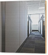 Carpeted Hall With Office Cubicles Wood Print