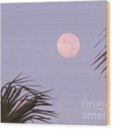 Carribean Full Moon Wood Print