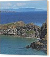 Carrick-a-rede Rope Bridge In The Wood Print