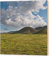 Carrizo Plain National Monument Wood Print