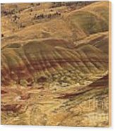 Carroll Rim Painted Hills Wood Print
