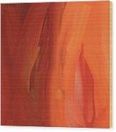 Carrot Visions Wood Print