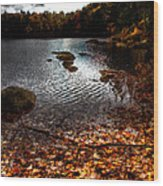 Cary Lake After The Storm Wood Print