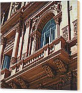 Casa Rosada Wood Print