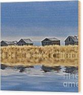 Casc8480-11 Wood Print