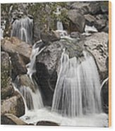 Cascade Creek Cascade Wood Print