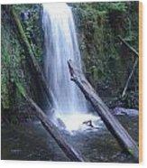 Rainforest Waterfall Cascades Wood Print