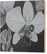 Cascade Of Orchidds Wood Print by Estephy Sabin Figueroa