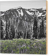 Cascade Range Meadow Wood Print