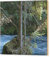 Cascade Rapids Wood Print