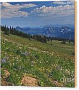 Cascades And Wildflowers Wood Print