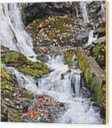 Cascades At Mingo Falls Wood Print