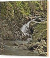 Cascades Happy Trail 9128 Wood Print