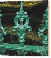 Cast Iron Fence Top 2  Wood Print