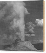 Castle Geyser Yellowstone Wood Print