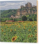 Castle In Dordogne Region France Wood Print