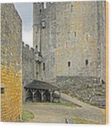 Castle Interior Ground France Wood Print