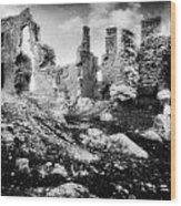 Castle Lyons Wood Print