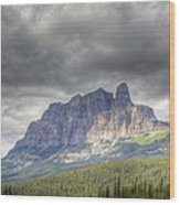 Castle Mountain 2011 Wood Print