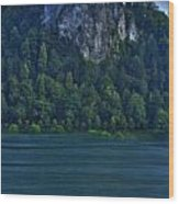 Castle Of Lake Bled Wood Print