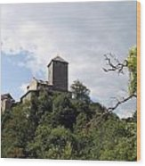 Castle Tirol Wood Print