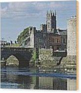 Castles, St Johns Castle, Co Limerick Wood Print