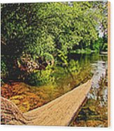 Castor River View Wood Print