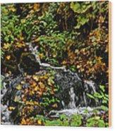 Casual Creek Wood Print