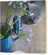 Cat And Flowers Wood Print