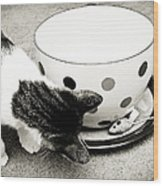 Cat And Mouse Coffee Wood Print