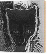 Cat Coming In Wood Print