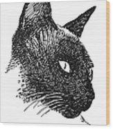 Cat Drawings 5 Wood Print