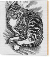 Cat Grooming Its Fur, Artwork Wood Print by Bill Sanderson