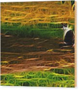 Cat In A Strange Place Wood Print