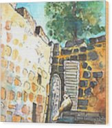 Cat In Nicosia Wood Print