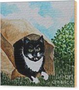 Cat In The Bag Wood Print