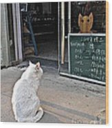Cat In The Window Wood Print