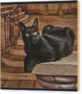 Cat On Pillar Wood Print