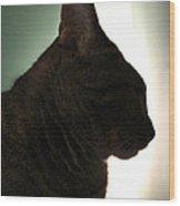 Cat Silhouette Wood Print by Nina Mirhabibi